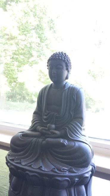romy yoga immersion training buddha
