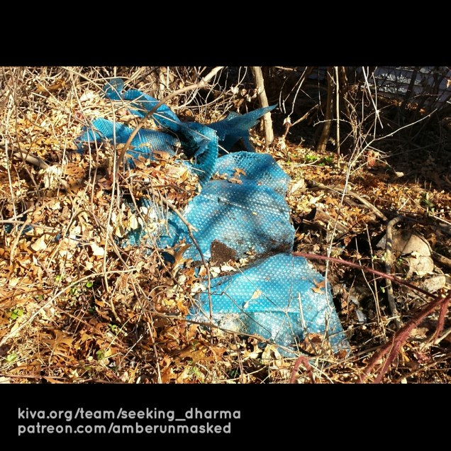 buried plastic
