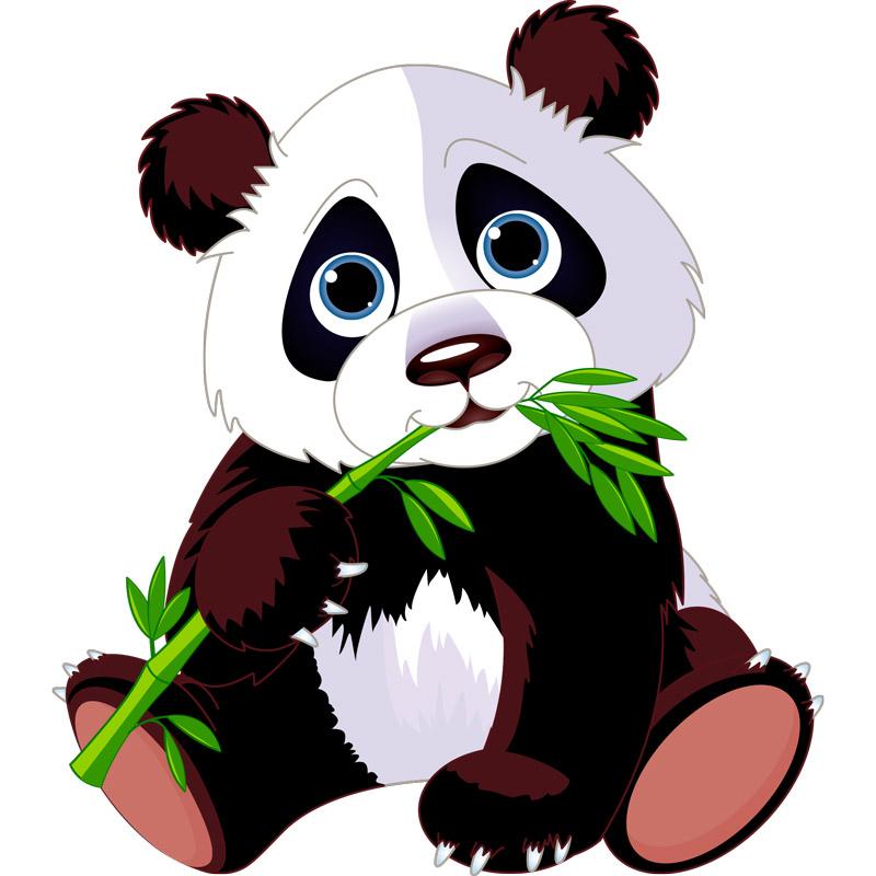 Sticker animal Panda et son bambou  Stickers Animaux Animaux de la jungle  Ambiancesticker