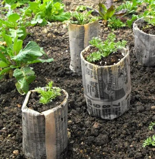 Come creare un semenzaio fai da te con materiali riciclati