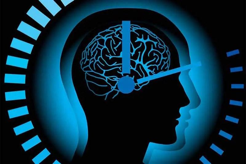 Il ritmo circadiano la scoperta premiata con il Nobel per
