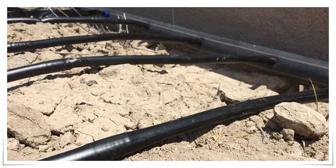 Photo of Desarrollan compuestos biodegradables y compostables