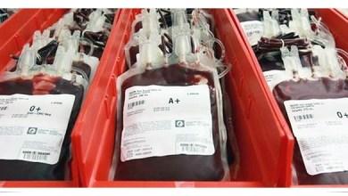 Photo of Vinmar brinda asesoría personalizada para mejorar sus productos empleando EVA
