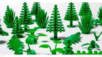 Photo of Lego venderá sus primeras piezas de plástico obtenido de caña de azúcar