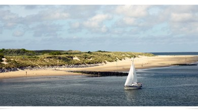 Photo of Continúa la búsqueda de contenedores en islas de los Países Bajos