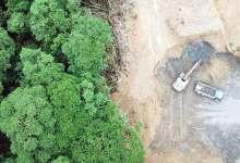 Photo of Pallets reutilizables evitaron la tala de 1.7 millones de árboles en 2019