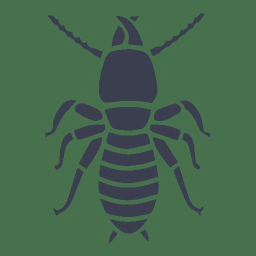 eliminación de termitas y carcomas