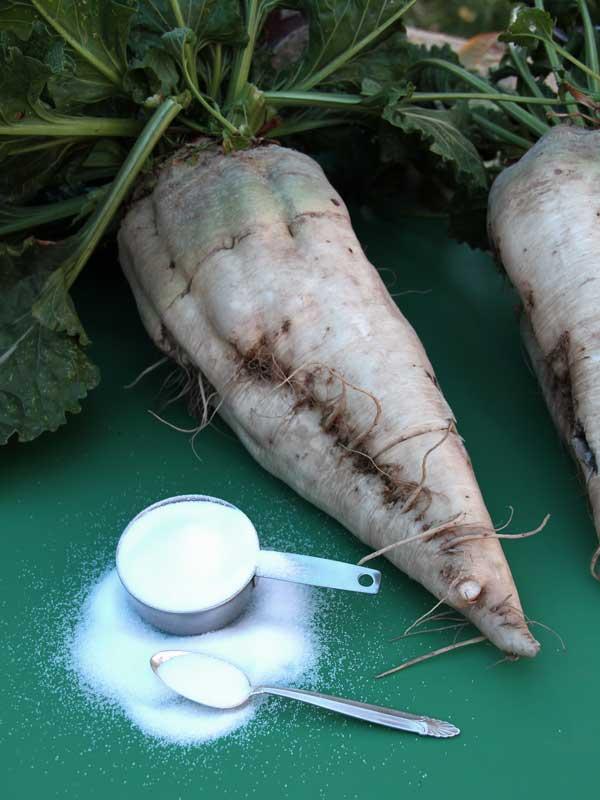 Transplants Root Vegetables Online PreOrdering Over
