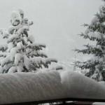 Neuschnee am 6.3.2009