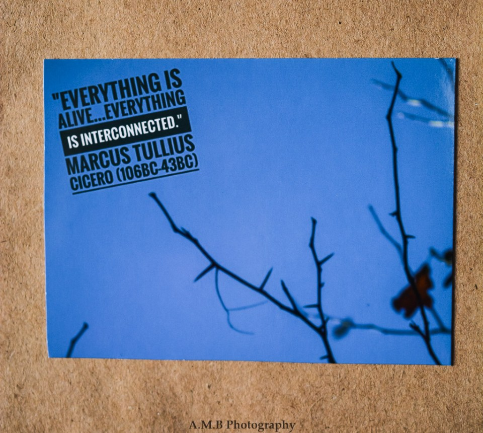 """Nature photo magnet """"Two Left"""" with a quote from long, long ago by Marcus Tullius Cicero, """"Everything is Alive...Everything is Interconnected."""""""