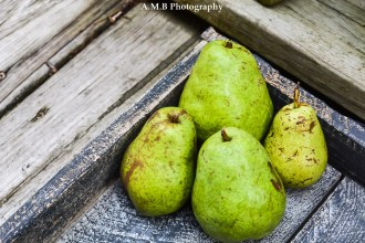 Fallen pears from our pear tree in Dana, Illinois. My second attempt at culinary/food photography. ;) Captured the Summer of 2017.