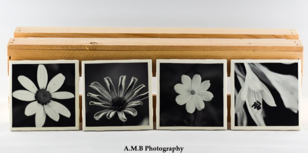 Set of 4 Black and White Blooms Coasters featuring a series of images highlighting Summer blooms at our home in Dana, Illinois from 2018. Coasters designed and made in the Fall of 2018.