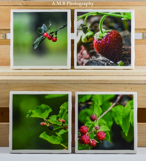 Set of 4 Fresh Fruit High Gloss Coasters all captured in my home gardens.