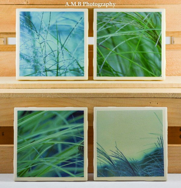 Set of 4 Ornamental Grass High Gloss Coasters all captured in my home gardens.
