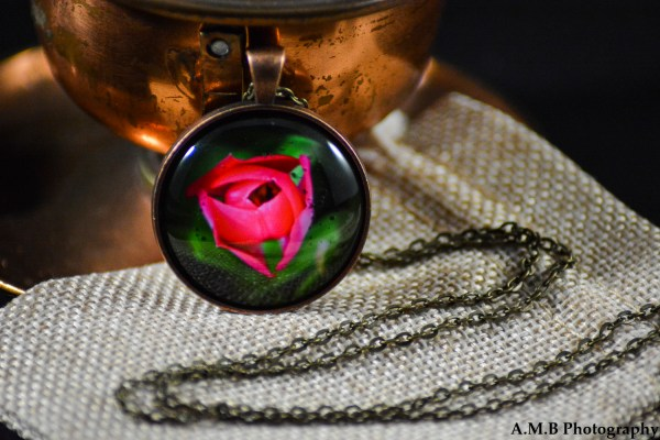A red Tulip set in an Antique Copper bezel with a brass chain. Image captured in the Spring of 2017 and pendant created in the Winter of 2019.