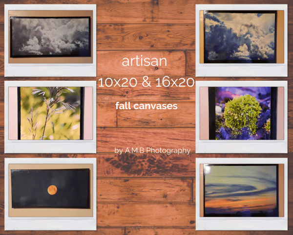 Artisan 10x20 & 16x20 Fall Canvases