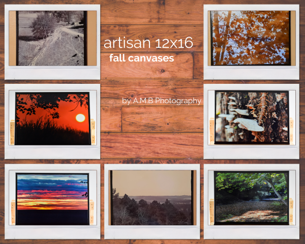 Artisan 12x16 Fall Canvases