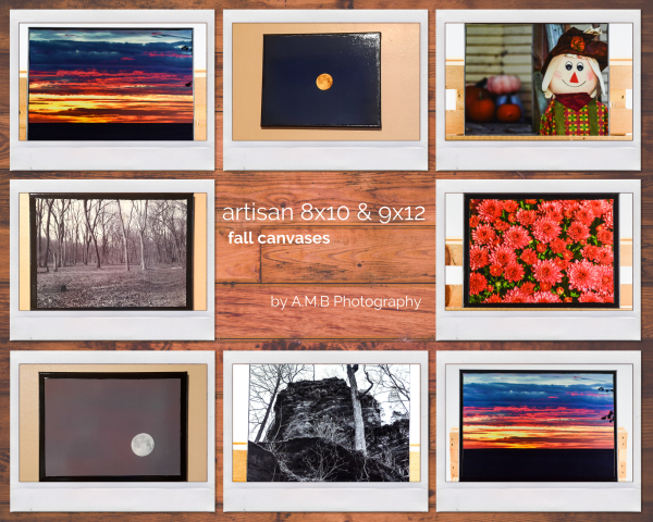 Artisan 8x10 & 9x12 Fall Canvases