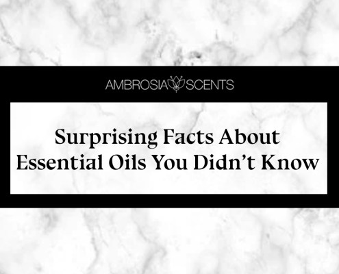 Surprising Facts About Essential Oils You Didn't Know