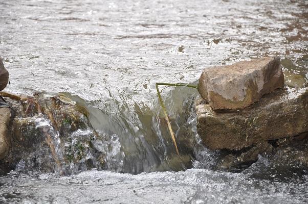 Stromend water tijdens kloofwandeling Wadi El Hasa tijdens een wandelreis van SNP door Jordanië