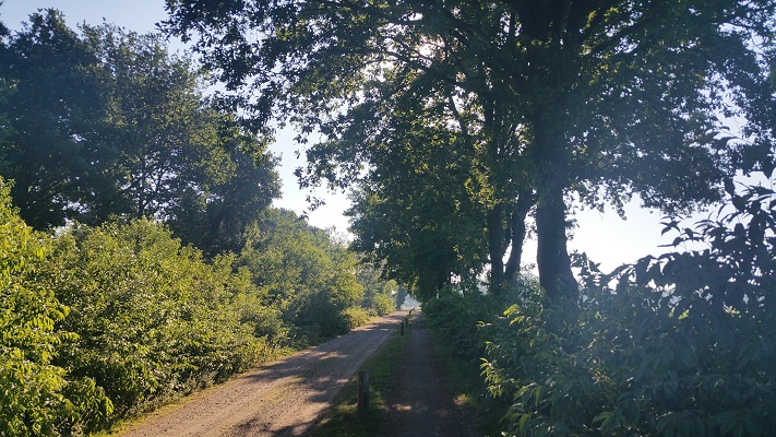 Wandelen over het Peelpad naar De Krim in Elsendorp