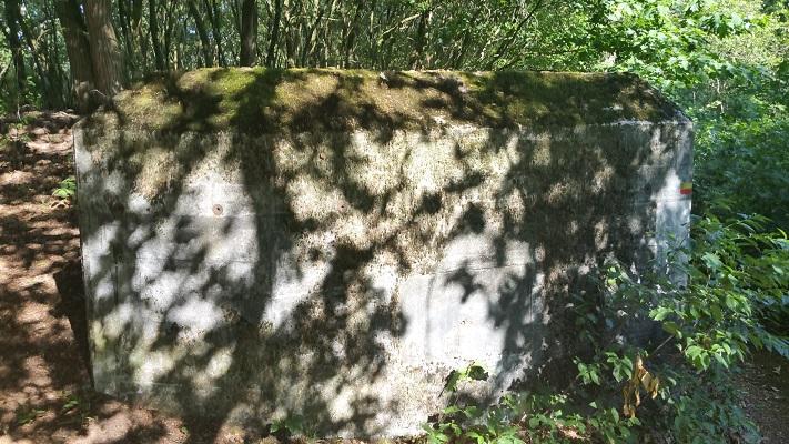 Wandelen over het Peelpad bij een bunker langs het Defensiekanaal