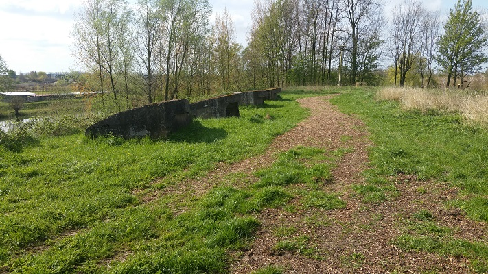 Wandelen over het Grebbeliniepad bij Fort De Spaes