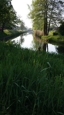Wandelen over het Grebbeliniepad langs het Valleikanaal in Veenendaal