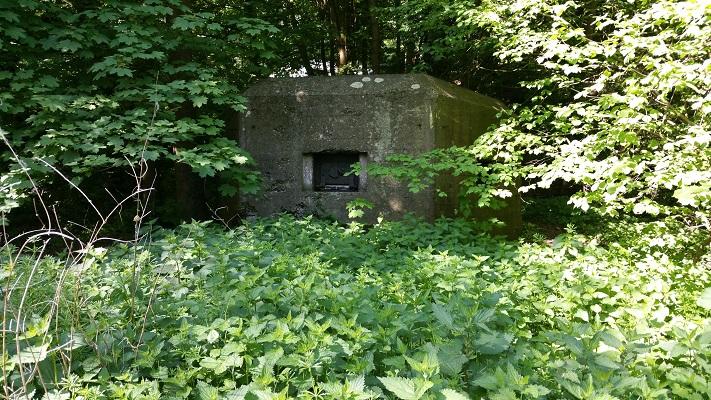 Wandelen over het Grebbeliniepad bij een bunker op de Grebbeberg