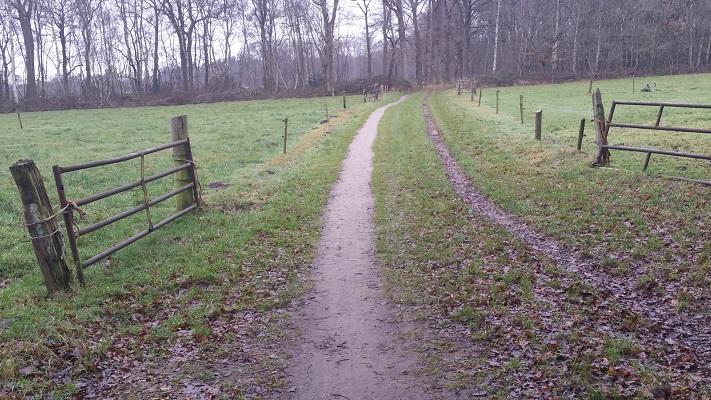 Wandelen over het Groot Frieslandpad over landweg in Beetsterzwaag