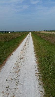 Wandelen over het Groot Frieslandpad naar de Kolk van Dussen