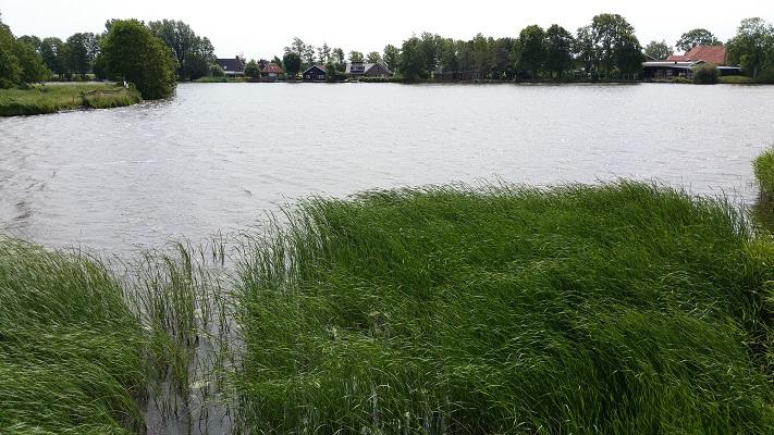 Wandelen over het Groot Frieslandpad bij Kanaal Alkmaar-Kolhorn