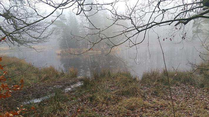 Wandelen over het Groot Frieslandpad in Olterterp