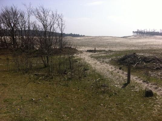 Wandelen over het Groot Frieslandpad door de duinene