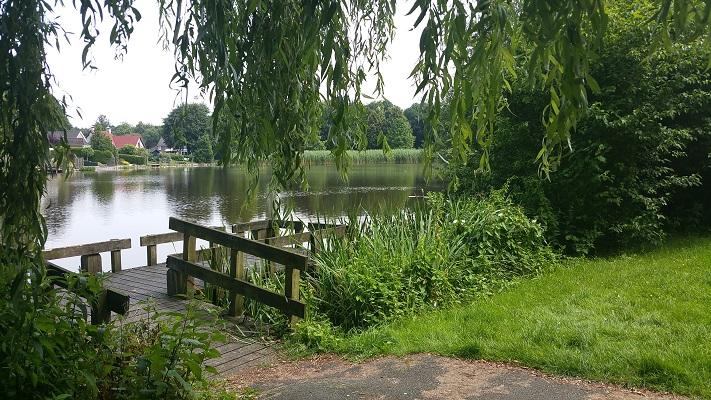 Wandelen over het Groot Frieslandpad door natuurpark in Oude Pekela