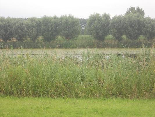 Hoendernesterbeek op een dagwandeling over het Hanzestedenpad in de Voorsterklei