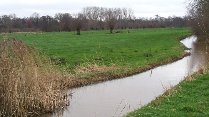 Wandelen over het Hertogenpad in het Aa-dal bij Heeswijk