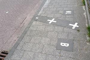 Wandelen over het Hugo de Grootpad in Baarle-Hertog