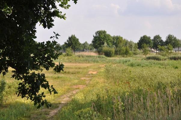 Nieuwe natuur in Uden tijdens wandeling langs riviertje de Leijgraaf van Boekel naar Middelrode