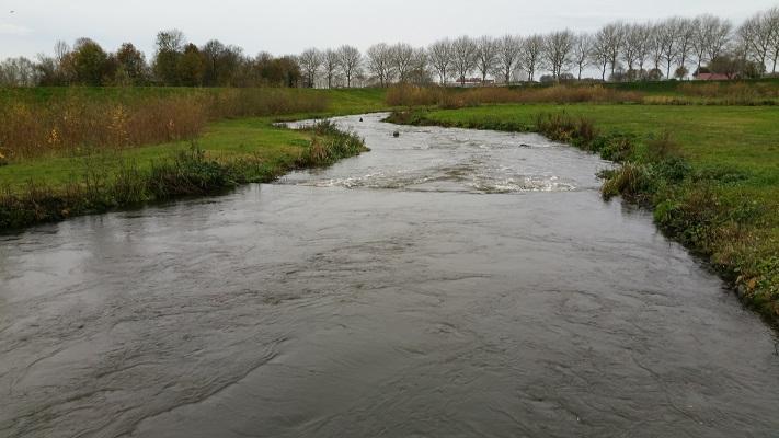 De Dieze op wandeling over het Maaspad van Den Bosch naar Heusden