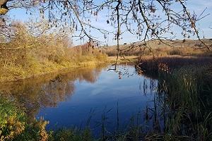 Wandelen over het Nederlands Kustpad in Noordhollands Duinreservaat