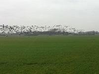 Broekerpolder op een wandeling over het Nederlands Kustpad van Anna Paulowna naar Den Oever