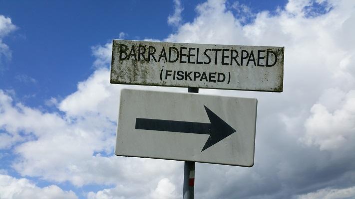 Fispaed op een wandeling van Franeker via Wijnaldum naa Sexbierum over het Nederlands Kustpad