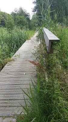 Knuppelbrug op een wandeling van Lauwersoog via Niekerk naar Ulrum over het Nederlands Kustpad