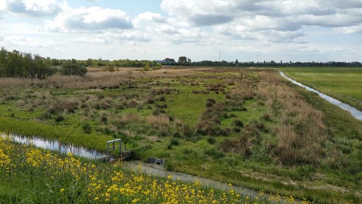 Batterij en Spaarnwouderveen tijdens wandeling van Pont Buitenhuizen naar Halfweg over het Noord-Hollandpad
