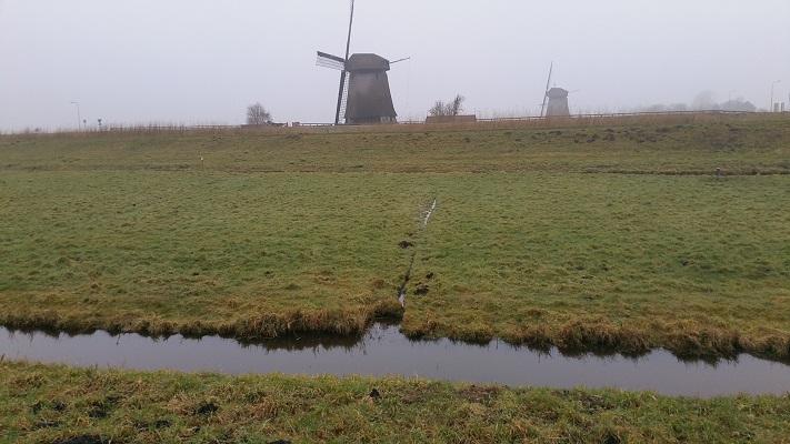 Molens Schermerhorn tijdens wandeling van Schermerhorn naar Krommenie over het Noord-Hollandpad