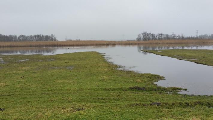 Crommenije tijdens wandeling van Schermerhorn naar Krommenie over het Noord-Hollandpad