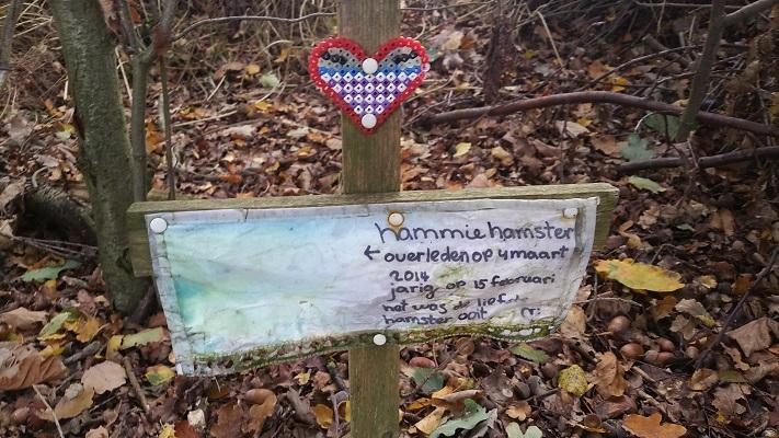 Wandelen over het Peelpad bij een graf voor een hamstertje