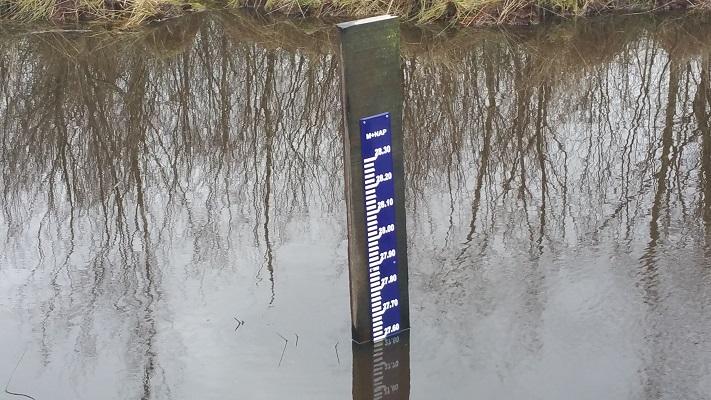 Wandelen over het Peelpad bij meter waterstand NAP De Groote Peel