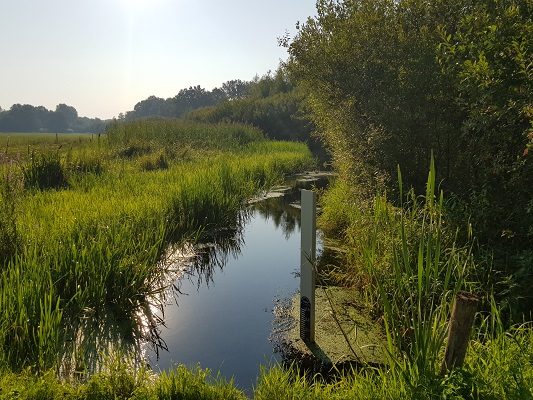 Wandelen over het Peelpad bij de Neerpeelbeek